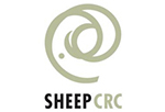 Link to Sheep CRC homepage